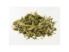 Przyprawy i zioła - Werbena liście 30g Bio*, 40088