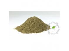 Przyprawy i zioła - Hyzop w proszku 35g Bio*, 40037P