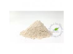 Mąka orkiszowa - Mąka typ 1500 Orkisz BIO 1 kg*, 00053